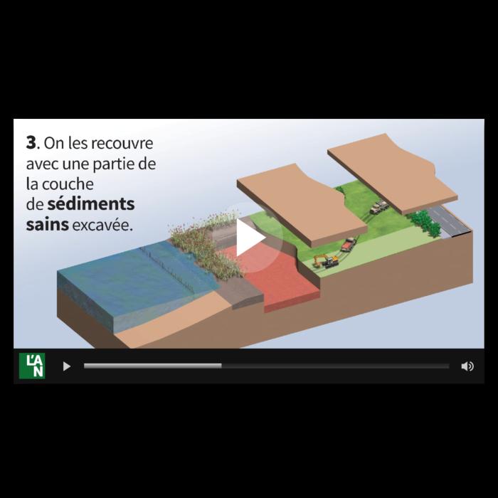 Vidéo Pour sauver la roselière !