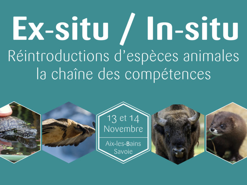 Colloque Ex-Situ / In-Situ : conception, production et animation