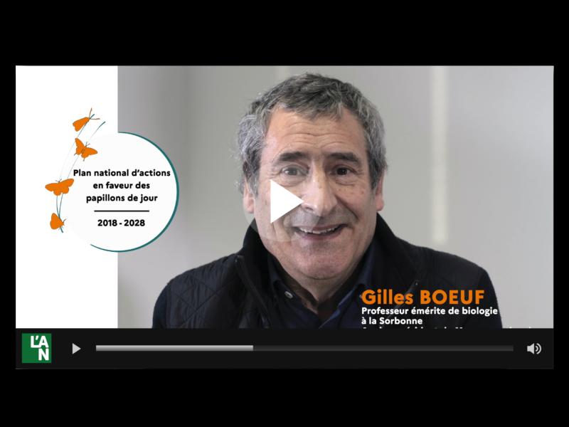 Vidéos pour le lancement du PNA en faveur des papillons de jour