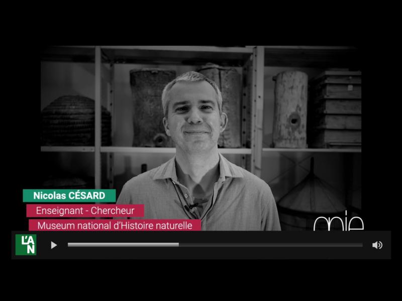 Vidéo Nicolas Césard au Musée de l'Homme
